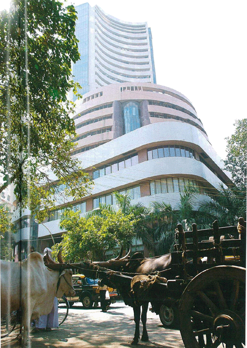 'Cow', the vchicle of God is standing calmly at the base of high-rise building (Mumbai).